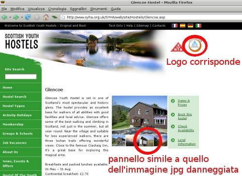 pagine web Glencoe  SYH